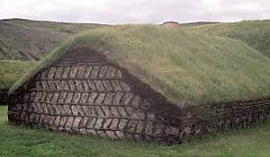 Stong herringbone turf